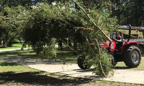 Debris Removal & Yard Clean Up