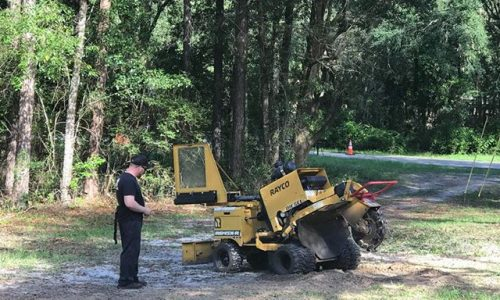 Stump Grinding and Land Clearing
